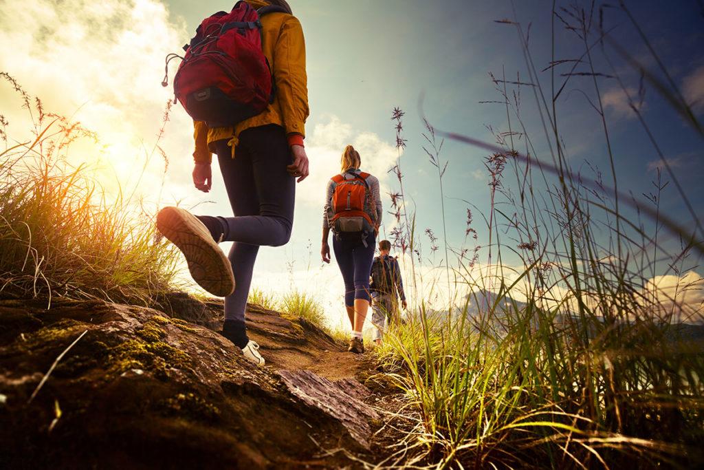 Unser Campingplatz ist direkt an die Rad- & Wanderwege des Bodensees angeschlossen.